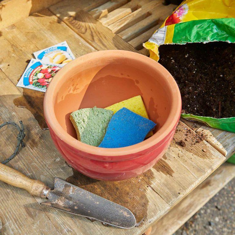 Губки в горшке, чтобы ваши растения не страдали от жажды: лайфхаки садоводов