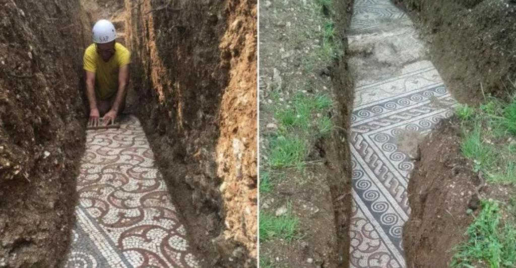 Бесценная находка: под виноградником в Италии нашли древнеримский мозаичный пол, сделанный в 3 веке н.э.