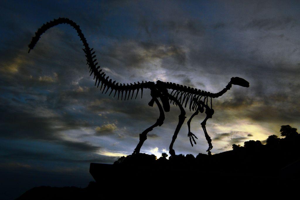 Просто выжить не могли: ученые представили окончательные объяснения причин вымирания динозавров