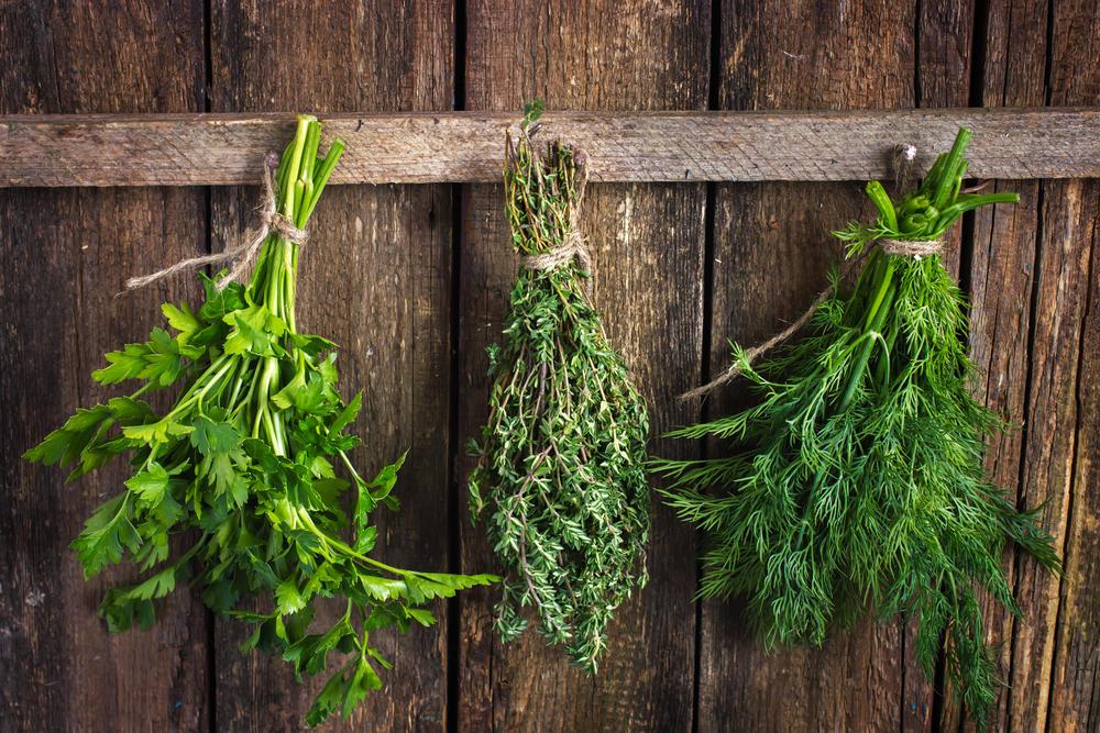 Укроп засолите с салом. Как правильно заготовить весеннюю зелень на зиму