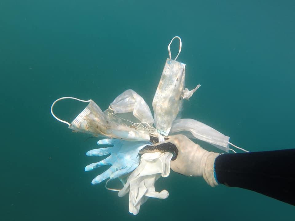 Медицинские макси и латексные перчатки на дне Средиземного моря: новая угроза глобального загрязнения планеты