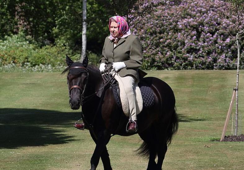 В 94 года катается верхом, и это – королева Елизавета II, появившаяся после карантина