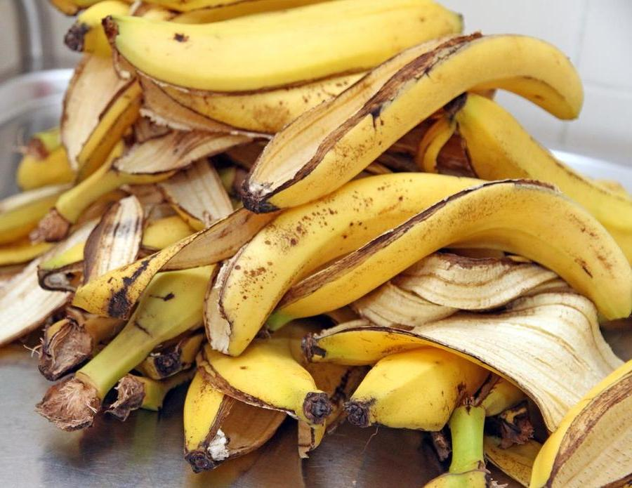 Беру патоку, кожуру банана, чайные пакетики и завариваю на солнце в течение часа. Выходит отличное удобрение