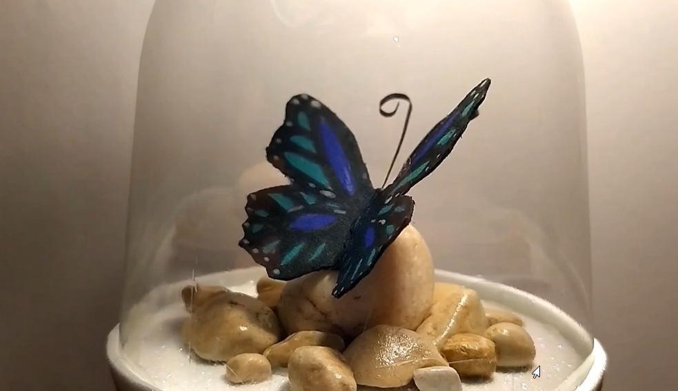 Как сделать шедевр из пустой бутылки: очаровательная бабочка своими руками