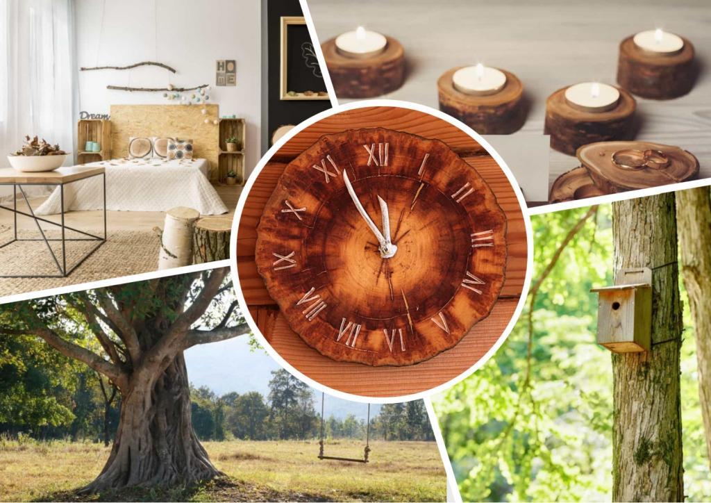 Когда засохло дерево: творческие способы его повторного использования – от домашнего декора до садовых качелей