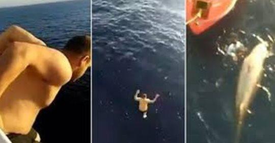 Чтобы спасти кита, который запутался в сетях, моряк прыгнул с 12-метровой палубы