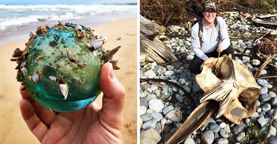 20 необычных и даже пугающих вещей, которые люди когда либо находили на пляжах