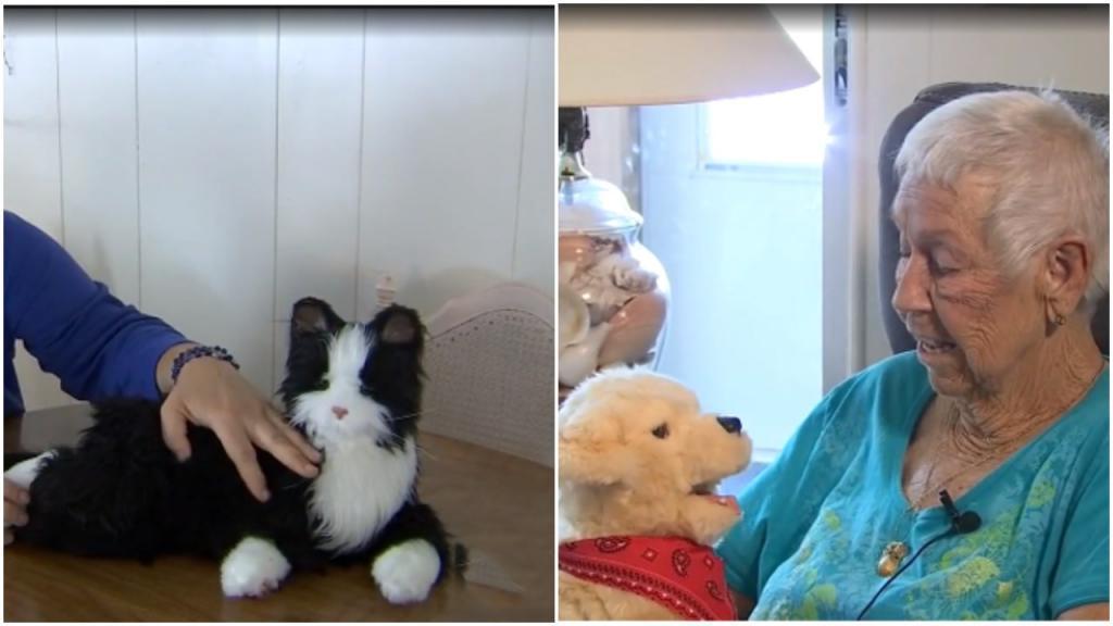 «Я зову ее Бадди!»: животные-роботы помогают пожилым людям находить друзей во время пандемии