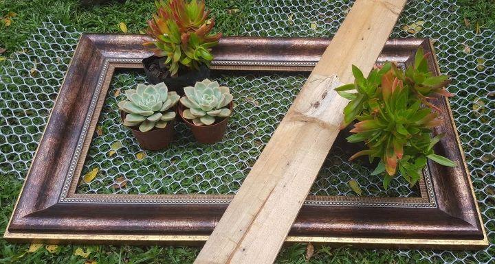 Муж взял старую рамку для фотографий и сделал из нее вертикальный сад для растений: теперь в прихожей висит зеленый уголок