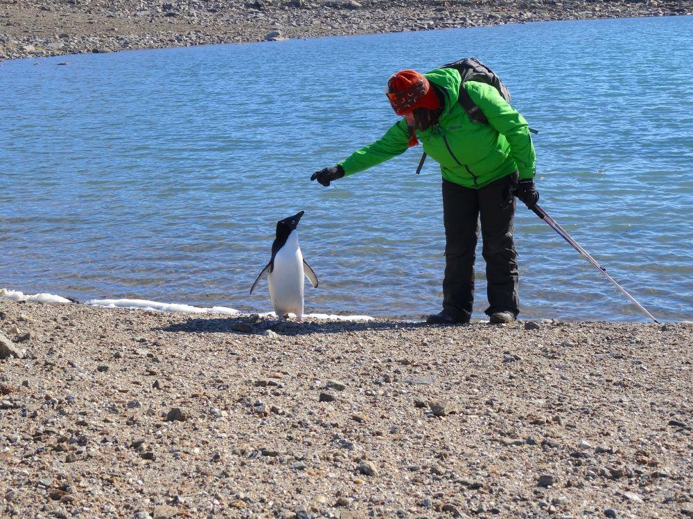 Русские женщины в Антарктиде: им покорились льды и пингвины, а недовольным мужчинам пришлось смириться