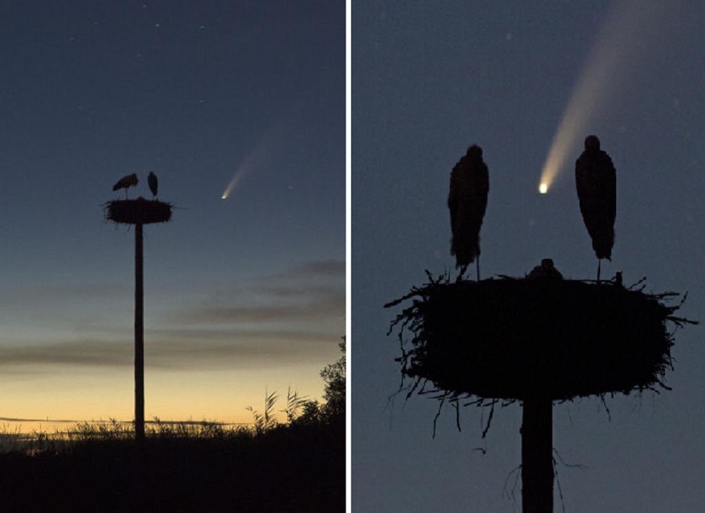 Фотограф не стал упускать возможность снять комету, которая пролетает около Земли раз в 7000 лет: что у него получилось