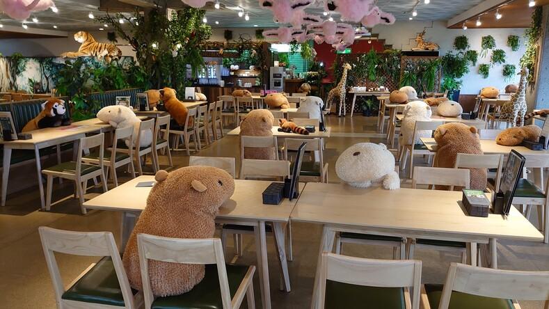 Очаровательные плюшевые капибары работают в ресторане и помогают соблюдать социальную дистанцию
