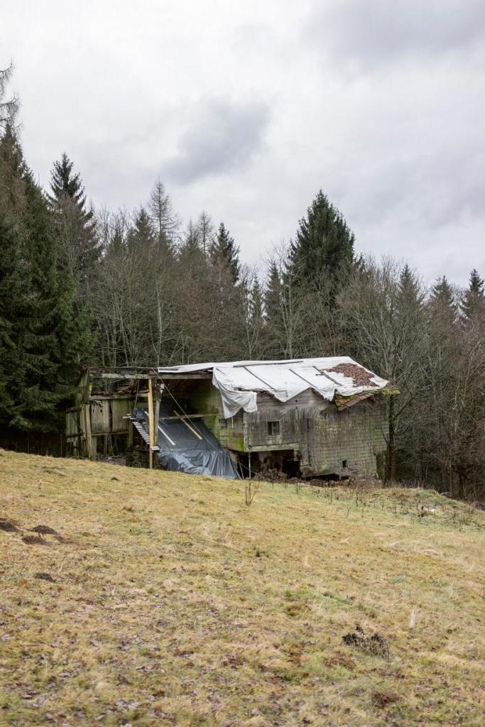 Чтобы восстановить заброшенный дом на окраине леса, архитектор использовал вставки из бетонных балок и стекла: креативный дизайн только подчеркивает богатое прошлое жилища