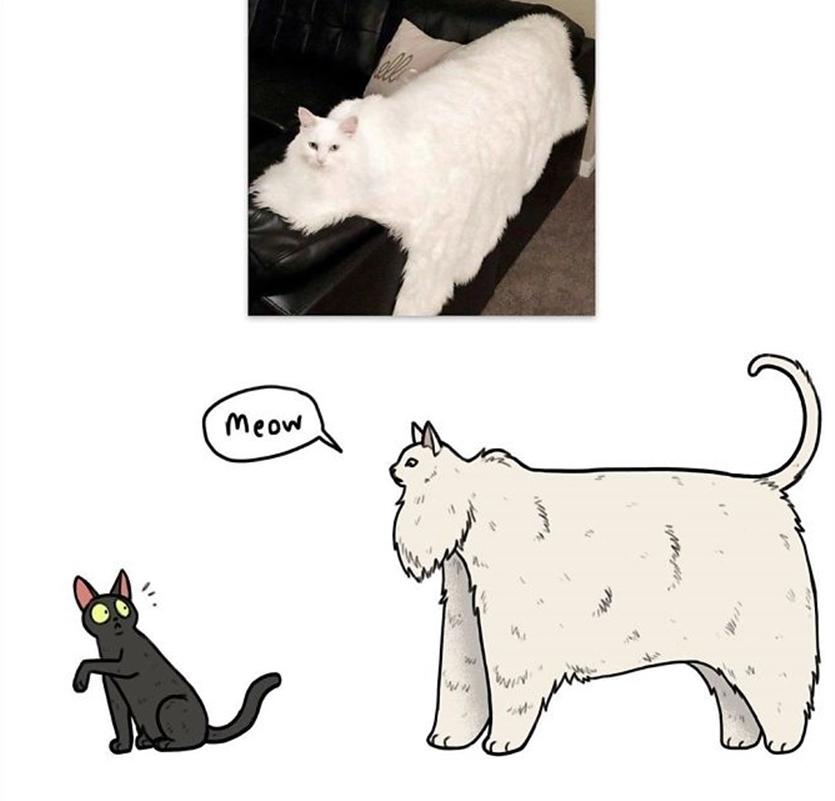 Художник берет веселые фото животных из интернета и превращает их в еще более смешные рисунки: фото лучших работ