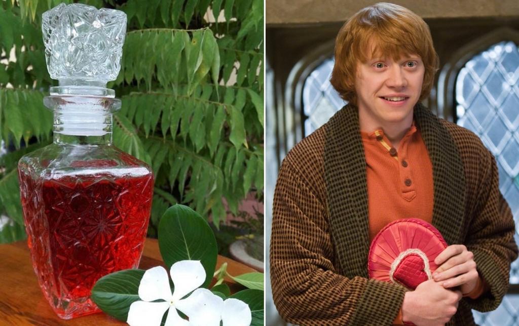 Любовное зелье из Гарри Поттера: рецепт напитка с простыми ингредиентами, обладающими реальным эффектом афродизиака