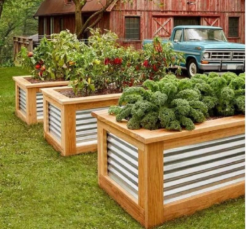 Сообразительные садоводы делают из гофрированных листов железа аккуратные и удобные клумбы: примеры в фото