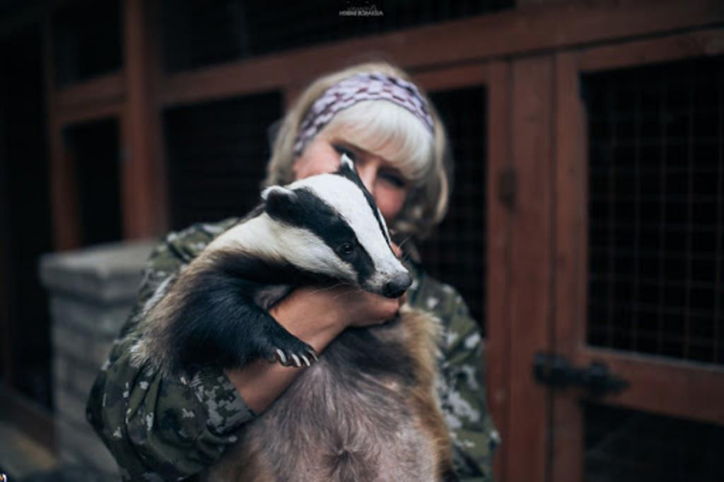 Жительница Пскова и ее дикая семья: как женщина приютила диких животных