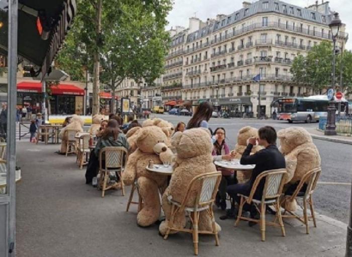 Кафе в Париже использует огромных плюшевых медведей для соблюдения дистанции