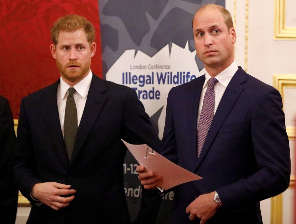 Королевство взялось за мемуары: готовится новая книга, открывающая правду о напряженных отношениях между принцами Гарри и Уильямом