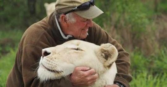 Защитника природы во время игры растерзали две его любимые белые львицы