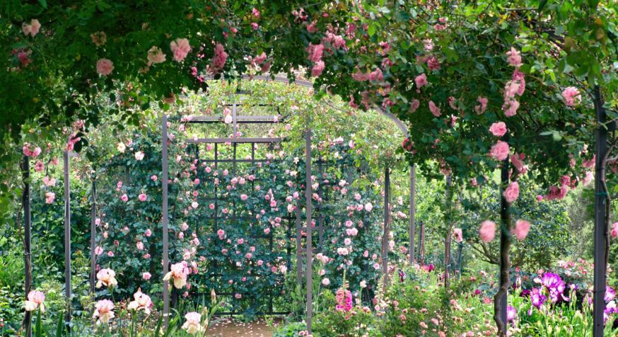 Любимое творение итальянского кутюрье Федерико Форке: его изысканный дом и сад в Тоскане