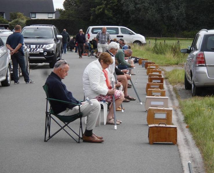 Сидят на стульях и считают. Vinkensport – новый пассивный вид спорта по наблюдению за птицами