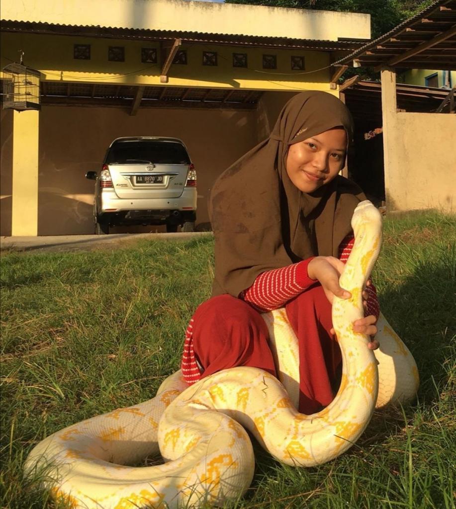 Девушка завела в качестве домашних питомцев 6 питонов: как она уживается с огромными рептилиями