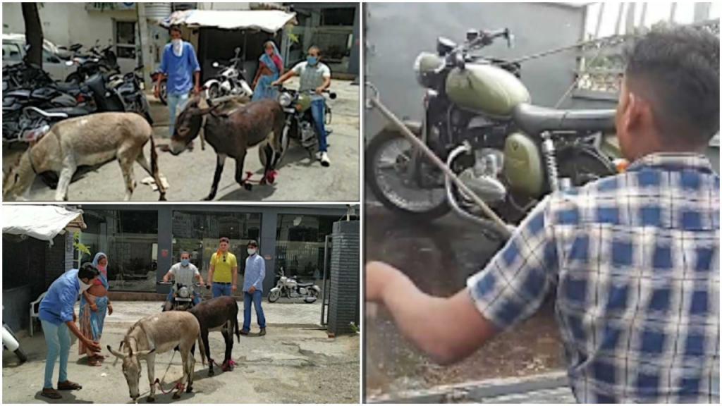 Индиец купил байк Jawa: после того как мотоцикл несколько раз ломался, парень устроил «ослиную акцию протеста»