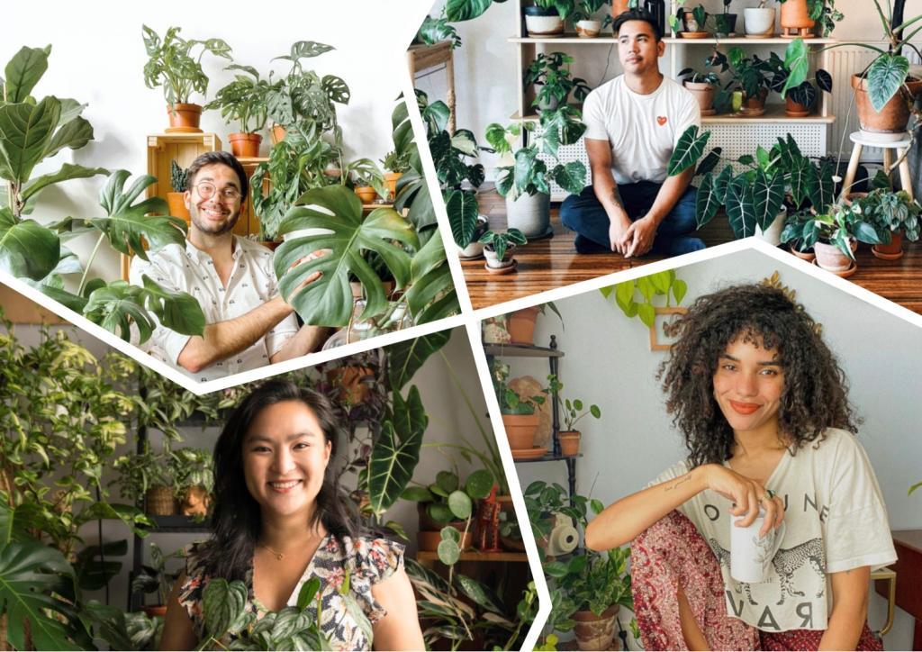 Для тех, кто живет в городе, садоводство выглядит иначе: шесть экспертов делятся своими хитростями