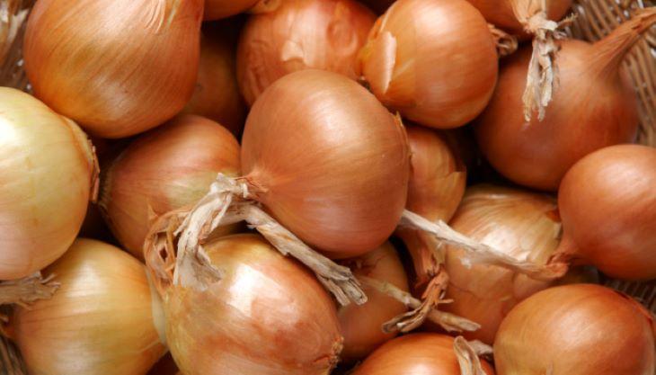 Я люблю острый репчатый лук, поэтому покупаю только светлые луковицы: советы при выборе