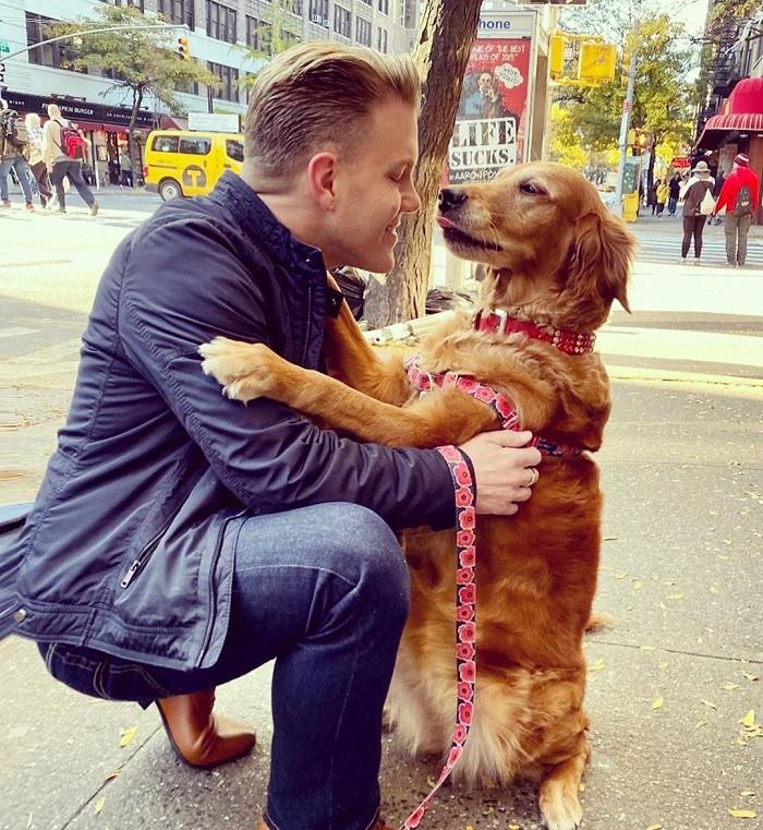 Дружелюбный золотистый ретривер стал звездой соцсетей благодаря необычному поведению   он любит обниматься с незнакомыми людьми (фото)