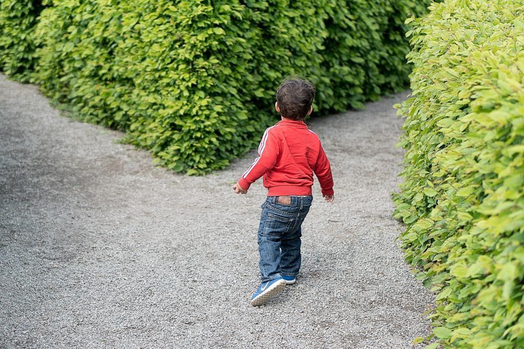 Предоставление детям права выбора: такой родительский ход   не панацея от плохого поведения