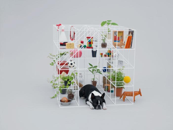В Лондоне пройдет четвертая выставка мебели для собак: как выглядели ее экспонаты в прошлые годы (фото)