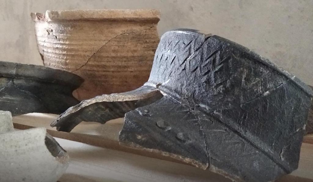 Предметы одежды, кухонная утварь и не только: ров средневековой польской крепости подарил археологам удивительные находки (фото)