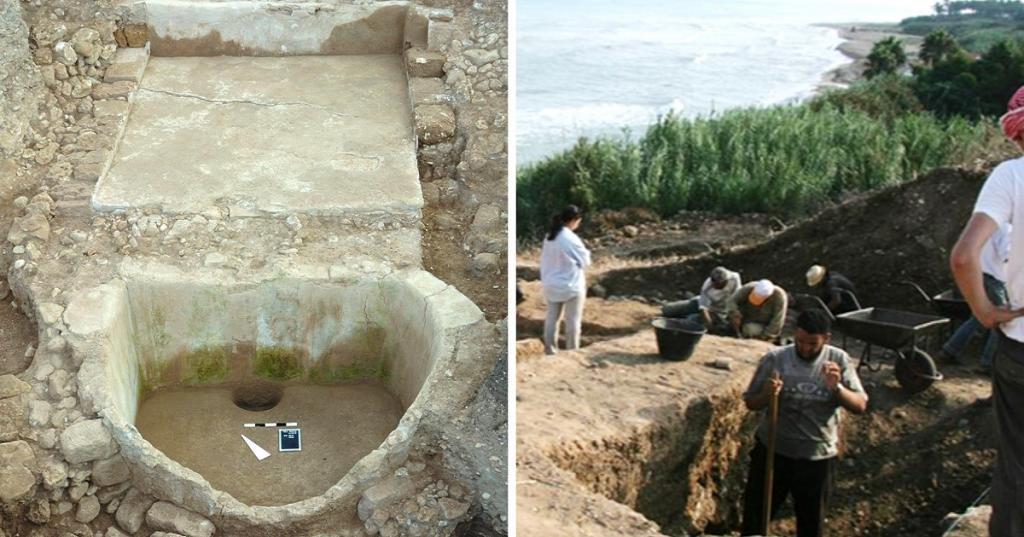 История в вине: в Ливане археологи обнаружили 2600-летнюю винодельню (фото)