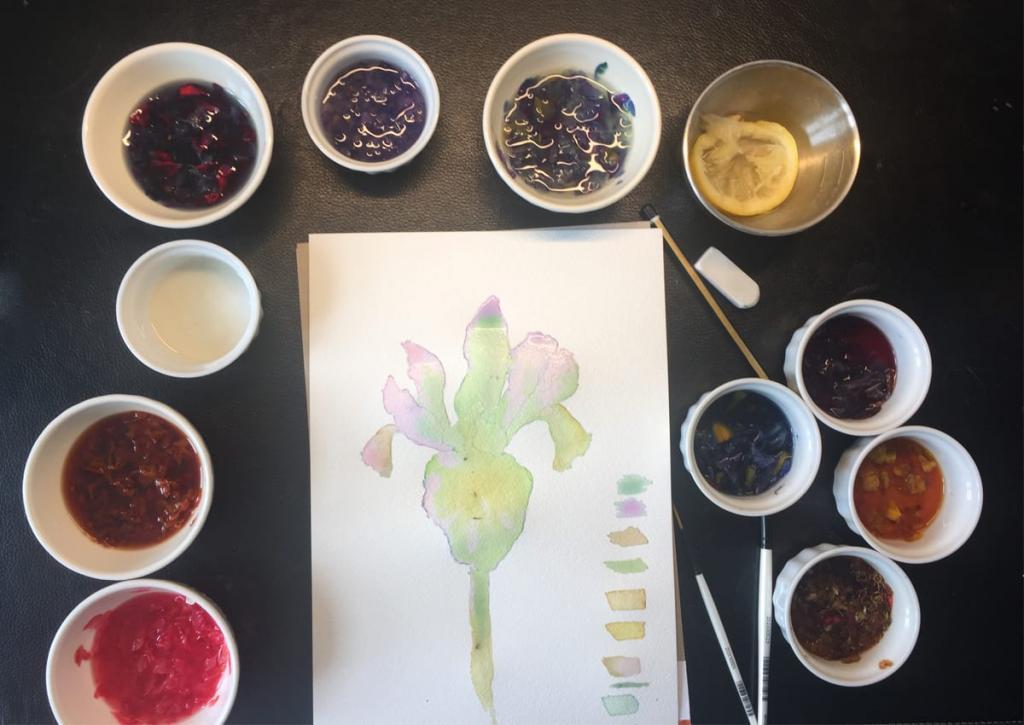 Как создать свои акварельные краски из лепестков цветов: рекомендации художника