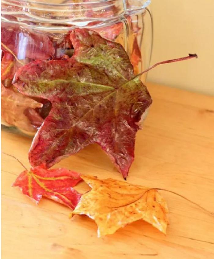 Осень в доме: 10 оригинальных украшений из листьев для интерьера