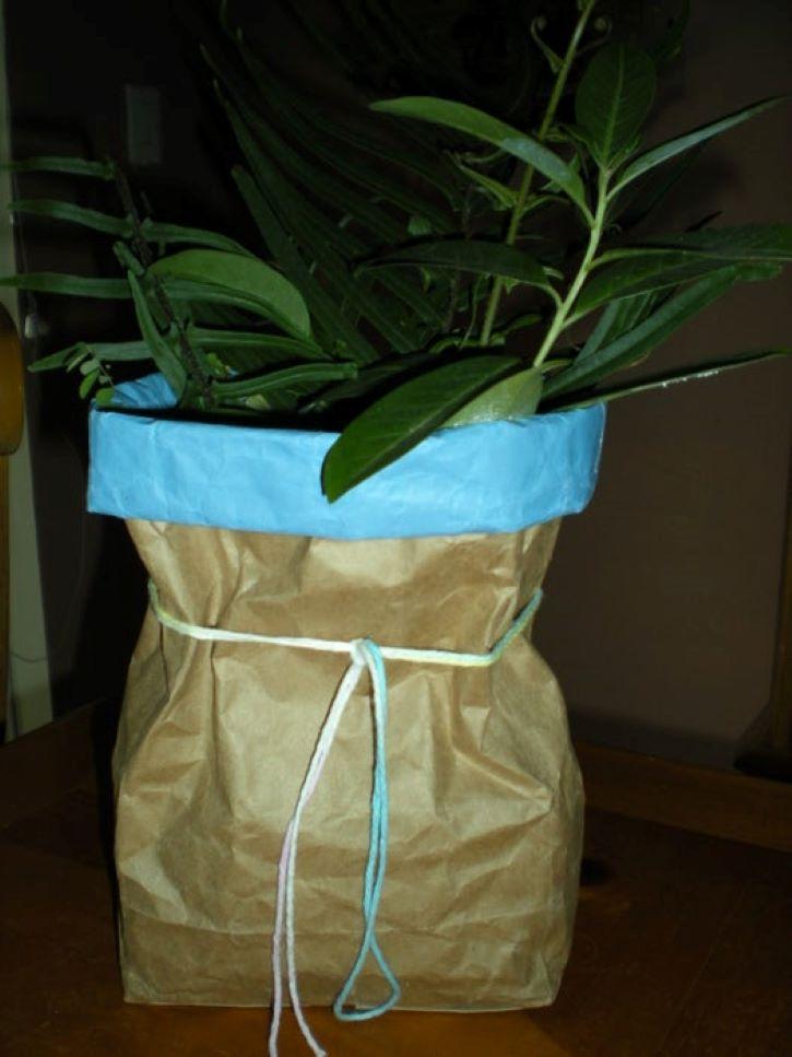 Взяла пустой бумажный пакет из-под сахара и сделала из него стильный горшок для цветка. В интерьер вписался отлично