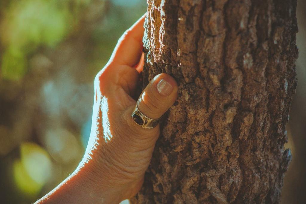 Деревья, которые нельзя сажать во дворе, так как они притягивают только горе и несчастья
