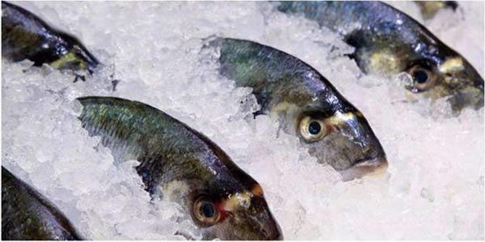 Никогда не куплю в супермаркете по скидкам (даже очень большим) рыбу и еще несколько продуктов