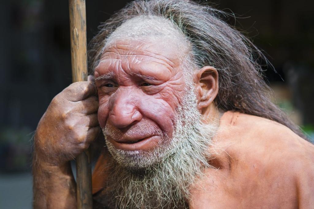 Ученые готовы  отодвинуть  историю на несколько тысяч лет назад: новое исследование зубов неандертальца показало, что они жили гораздо раньше