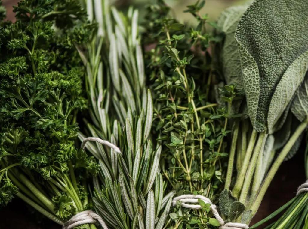 Не кладите зелень в холодильник: 10 советов как продлить срок хранения продуктов