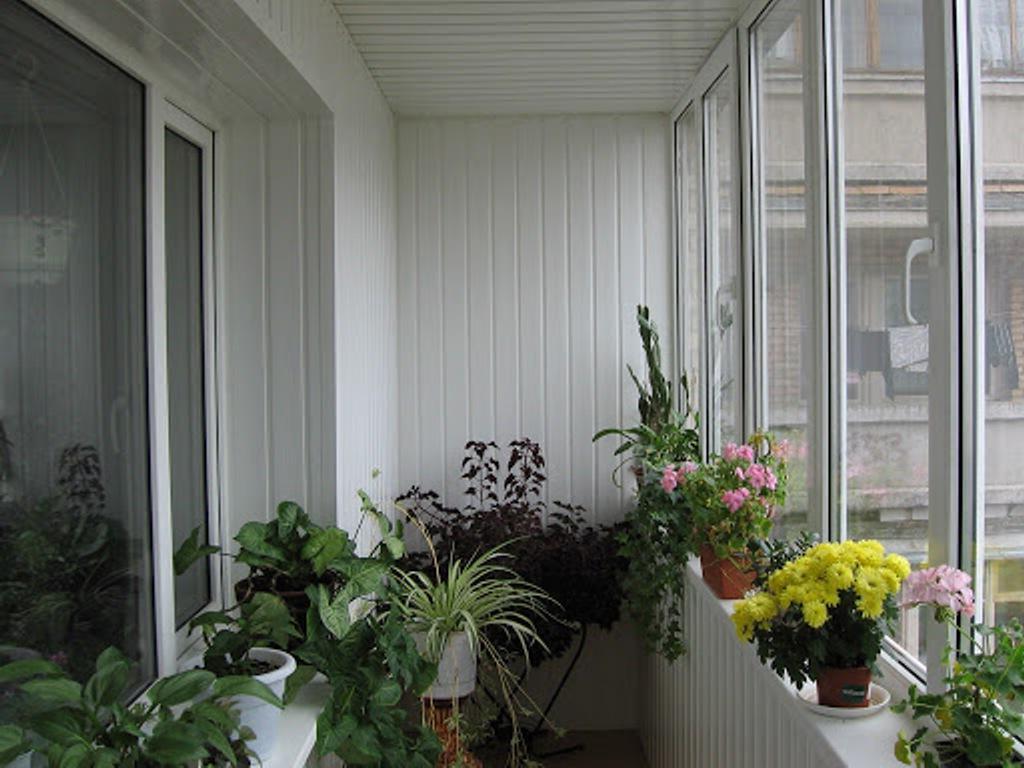 Я утеплила балкон и с наступлением осени устроила на нем огород. Выращивать овощи на балконе несложно