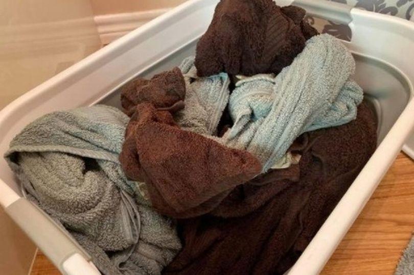 Женщина проводила уборку и решила замочить свои «чистые» полотенца на ночь: результат показался ужасным (фото)