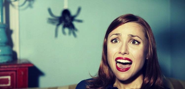 Осень пришла, встречаем полчища мух и пауков в доме: кто к нам лезет внутрь и как этого избежать