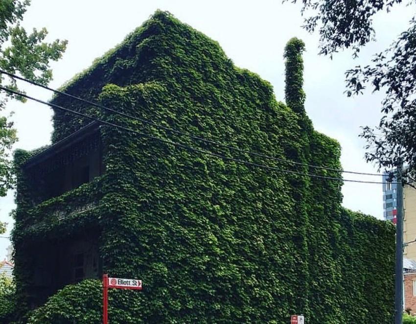 Живой дом с тремя спальнями сравнивают с жутким домом из Джуманджи: особняк с террасой теперь оценивается в сумму до $ 2 200 000