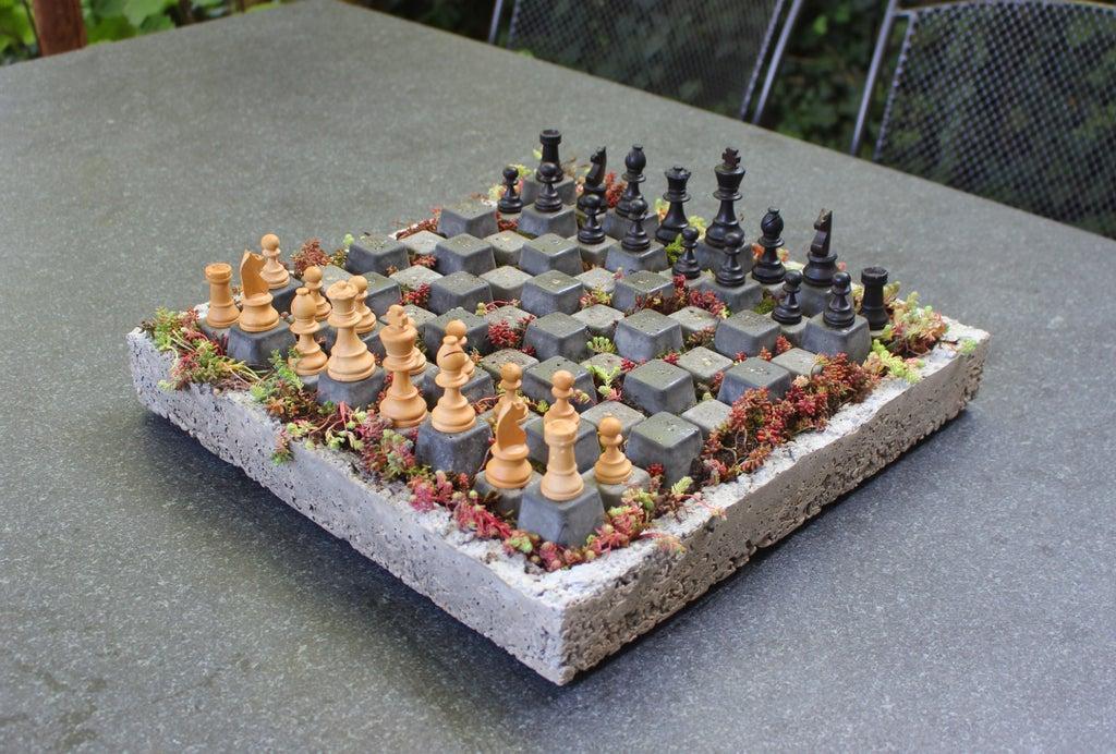 Залил контейнер для рассады цементом и сделал оригинальную шахматную доску, на которой еще и цветочки посадил: теперь все хотят со мной сыграть
