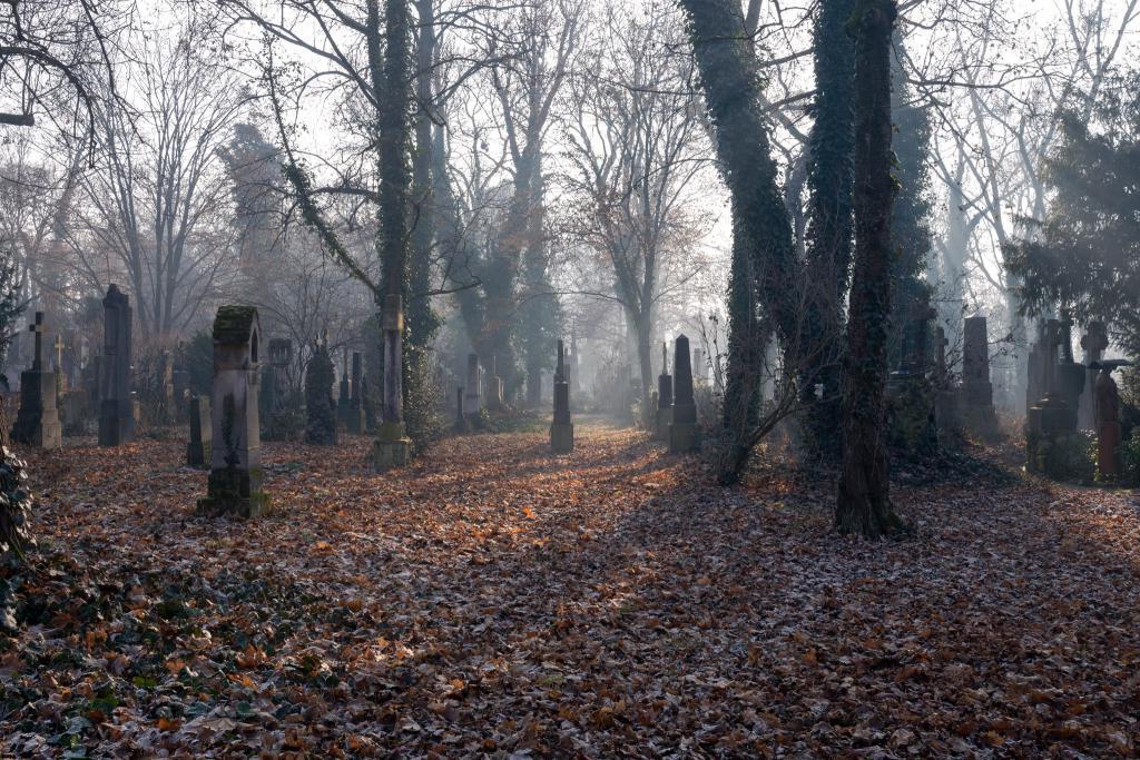 Походы на кладбище и сломанный забор. Чего нельзя делать 2 ноября, в Артемьев день