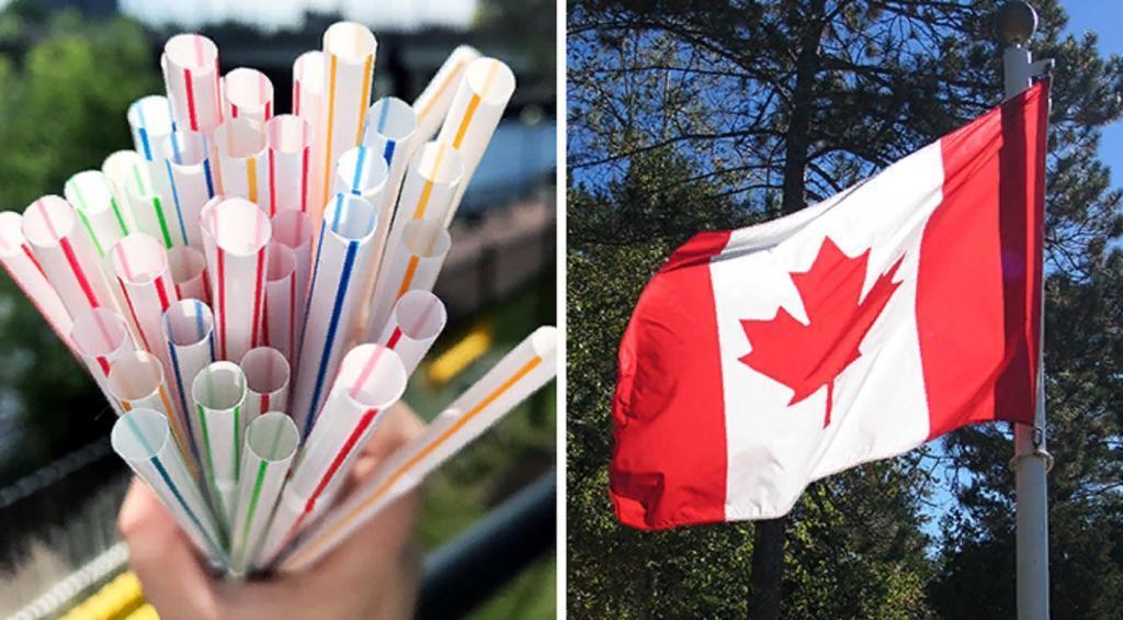 Трубочки, пакеты и столовые приборы: Канада опубликовала список широко используемых пластиковых изделий, которые будут запрещены в стране в 2021 году