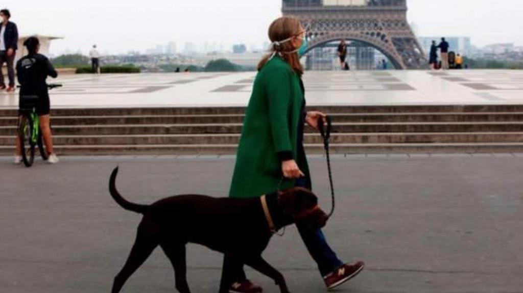 В Финляндии премьер уходит на карантин, во Франции   комендантский час: новости о коронавирусе в мире